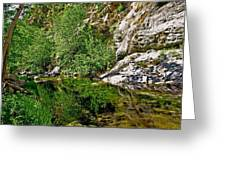 Bear Creek Greeting Card