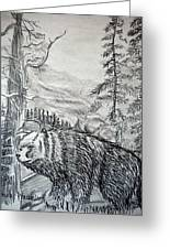 Bear In The Woods Greeting Card
