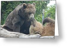 Bear Kisses Greeting Card