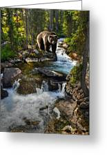 Bear Necessity Greeting Card