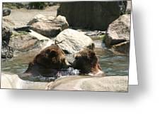 Bear Smooches Greeting Card