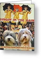 Bearded Collie Art Canvas Print - Singin In The Rain Movie Poster Greeting Card