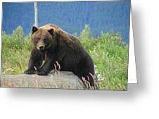Bearly Posing Greeting Card