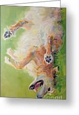 Bear's Backscratch For Phone Cases Greeting Card