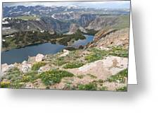 Beartooth Wildflowers Greeting Card