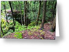 Beartown Rocks State Park Greeting Card