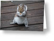 Beast Mode Squirrel Greeting Card