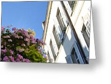 Windows With Flowers Greeting Card