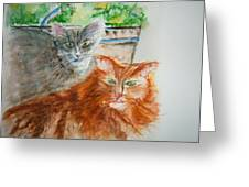 Beauregard And Stonewall Greeting Card