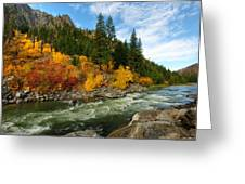 Beautiful Autumn Greeting Card by Dan Mihai
