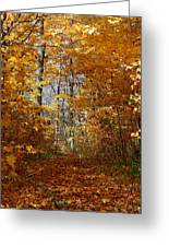 Beautiful Autumn Sanctuary Greeting Card
