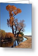 Beautiful Bishop Canal Greeting Card