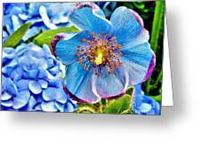 Beautiful Blue Orchid Greeting Card