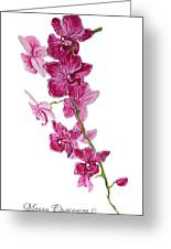 Beautiful Burgundy Orchid Flower Original Floral Painting Pink Orchid I By Megan Duncanson Madart Greeting Card