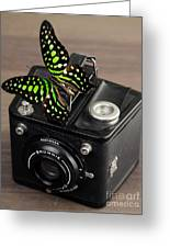 Beautiful Butterfly On A Kodak Brownie Camera Greeting Card