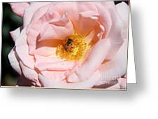 Beautiful By Nature Greeting Card