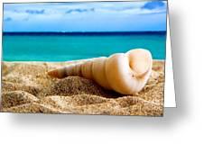 Beautiful Caribbean Sea Greeting Card