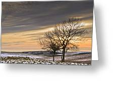 Beautiful Colorful Winter Sunset Greeting Card