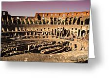 Beautiful Colosseum Rome Greeting Card