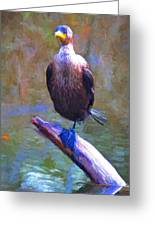 Beautiful Cormorant Greeting Card