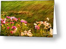 Beautiful Cosmos Greeting Card by Darren Fisher