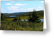 Beautiful Day In The Country Greeting Card