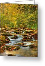 Beautiful Fall View In Tennessee Greeting Card
