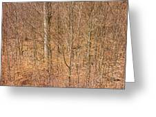 Beautiful Fine Structure Of Trees Brown And Orange Greeting Card