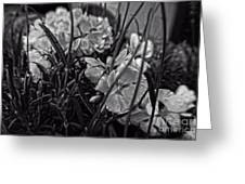 Beautiful Floral Blossoms Greeting Card by Doc Braham
