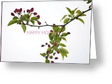 Beautiful Floral Greetings Greeting Card