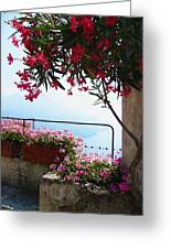 Beautiful Flowers Of Ravello Italy Greeting Card