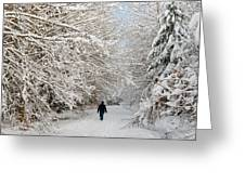 Beautiful Forest In Winter With Snow Covered Trees Greeting Card