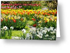 Beautiful Garden Greeting Card