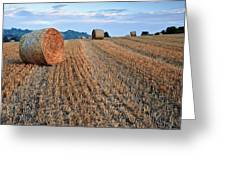 Beautiful Golden Hour Hay Bales Sunset Landscape Greeting Card