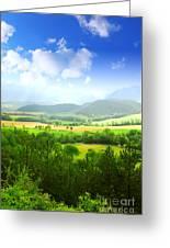 Beautiful Greens Landscape Greeting Card