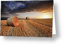 Beautiful Hay Bales Sunset Landscape Digital Painting Greeting Card