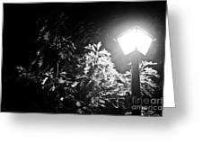 Beautiful Lamp Light In The Dark Greeting Card by Fatemeh Azadbakht