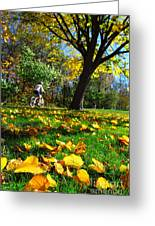 Beautiful Landscape Greeting Card by Boon Mee