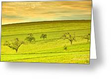 Beautiful Landscape In The Spring Greeting Card by Regina Koch
