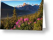 Rocky Mountains Sunset Greeting Card