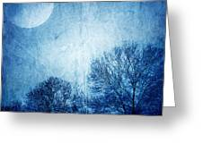 Beautiful Moonlight Photos Greeting Card