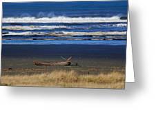 Beautiful Ocean Shores Greeting Card