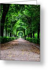 Beautiful Park At Schonbrunn Palace In Vienna Austria Greeting Card