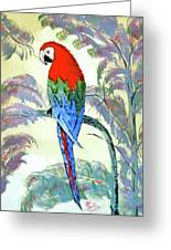 Beautiful Parrot For Someone Special Greeting Card