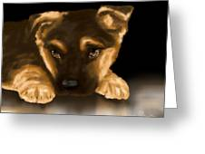 Beautiful Puppy Greeting Card