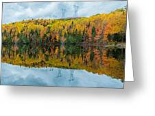 Beautiful Reflections Of A Autumn Forest In A Lake Greeting Card