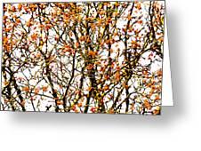 Beautiful Rowan 10 - Square Greeting Card