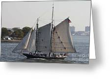 Beautiful Sailboat In Manhattan Harbor Greeting Card