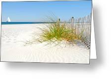 Beautiful Sand Dune Greeting Card
