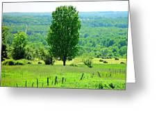 Beautiful Pennsylvania Summer Scene - Colorful Landscape - Painting Like Greeting Card